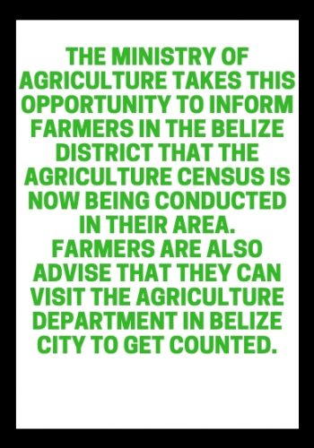 Copy of Belize Agriculture Census is here